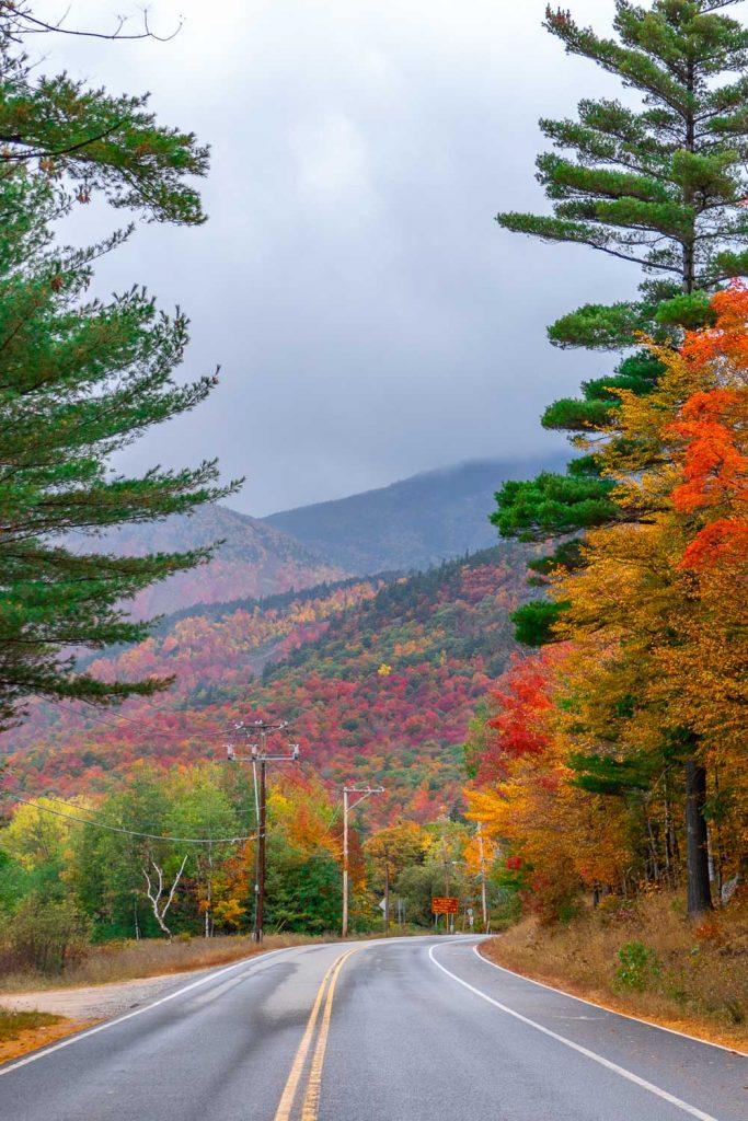 tree lined road in the Adirondacks Fall foliage