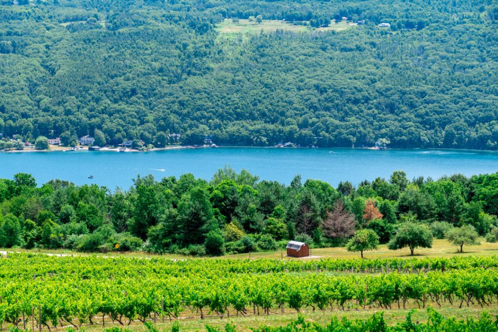 Keuka Lake view from Bully Hill Vineyards