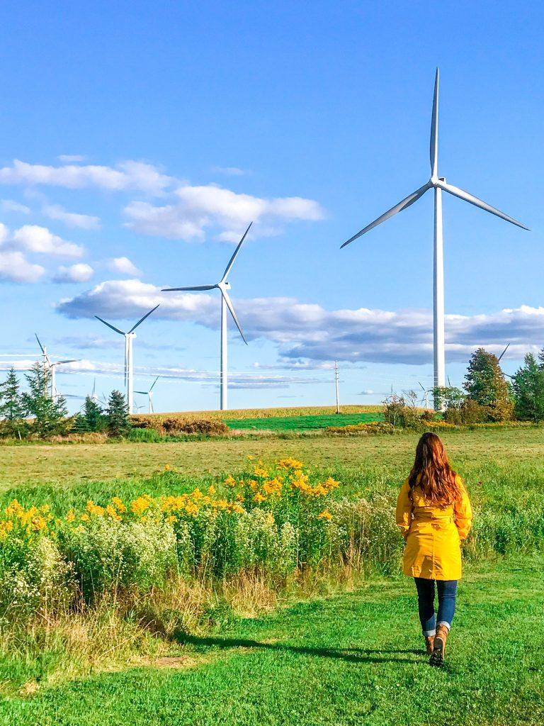 Wind turbines in New York